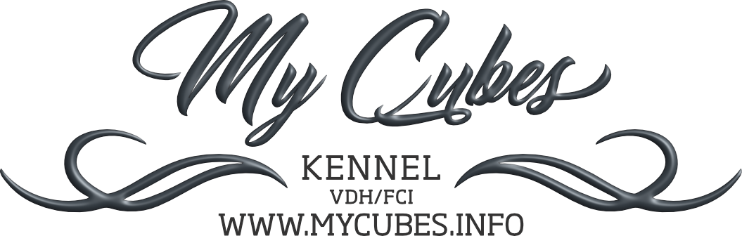 mycubes.info